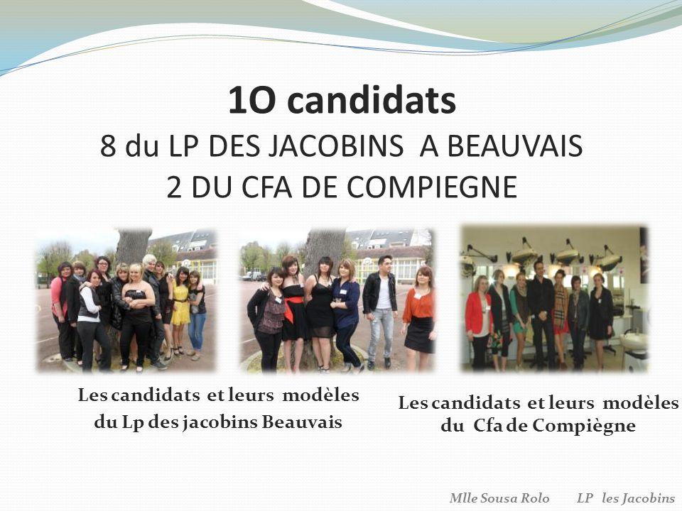 1O candidats 8 du LP DES JACOBINS A BEAUVAIS 2 DU CFA DE COMPIEGNE