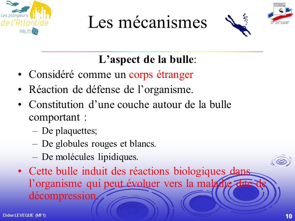 Les mécanismes L'aspect de la bulle: Considéré comme un corps étranger