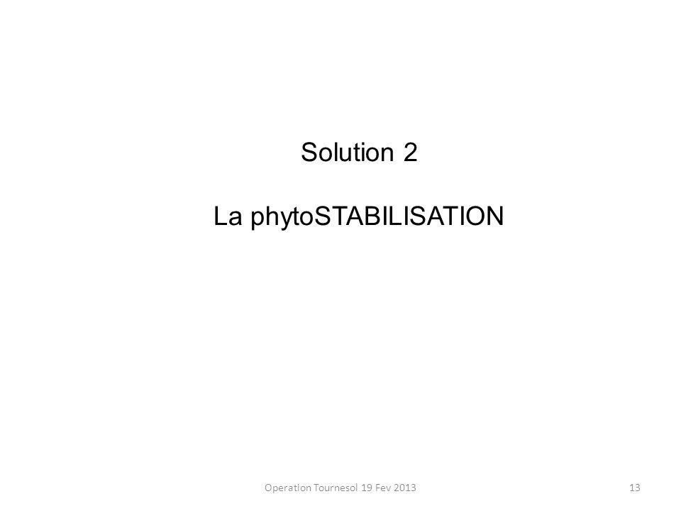 La phytoSTABILISATION