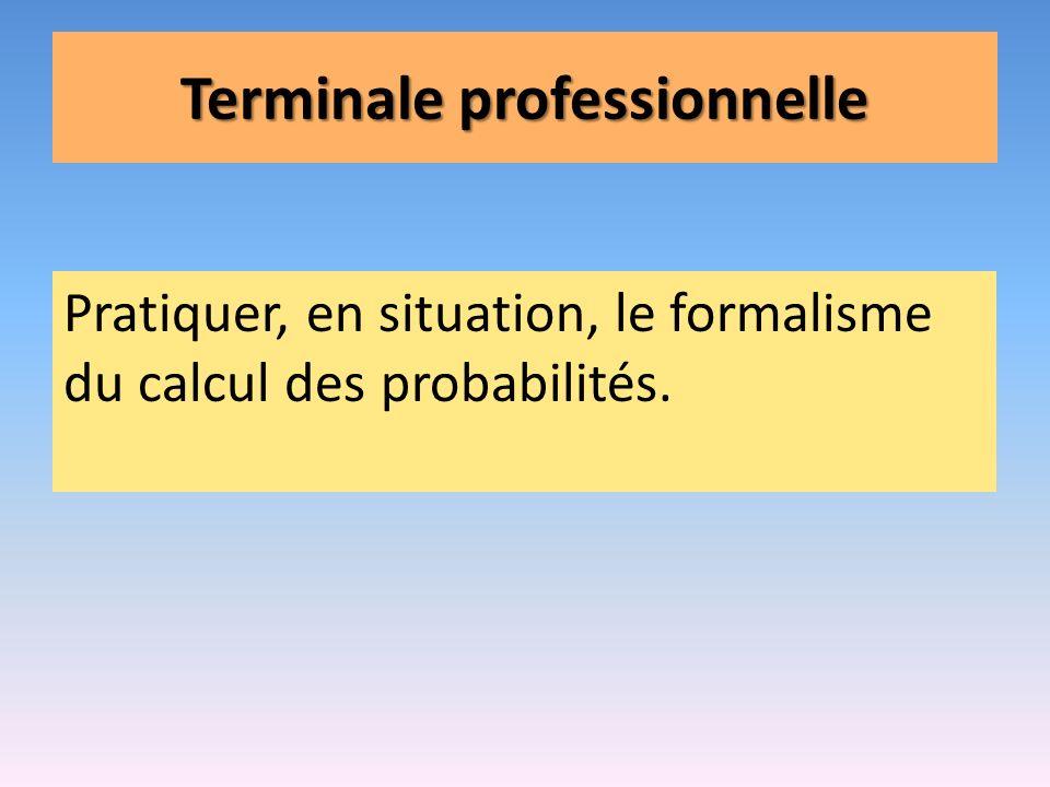 Terminale professionnelle
