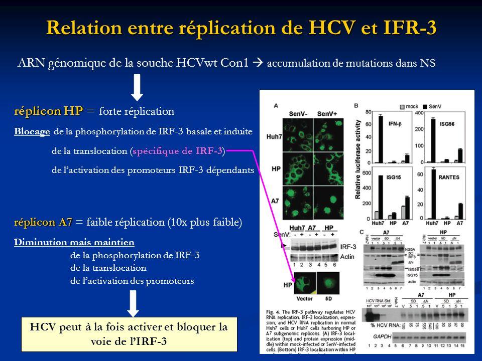 Relation entre réplication de HCV et IFR-3