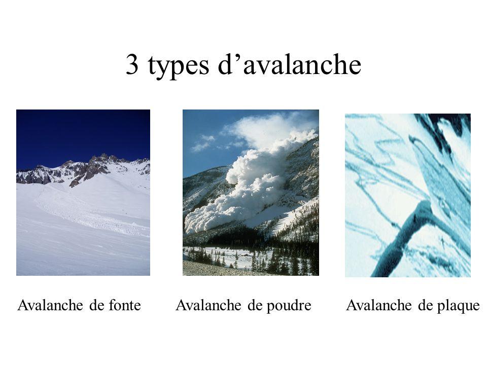 3 types d'avalanche Avalanche de fonte Avalanche de poudre