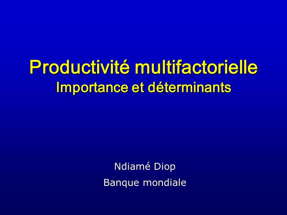 Productivité multifactorielle Importance et déterminants