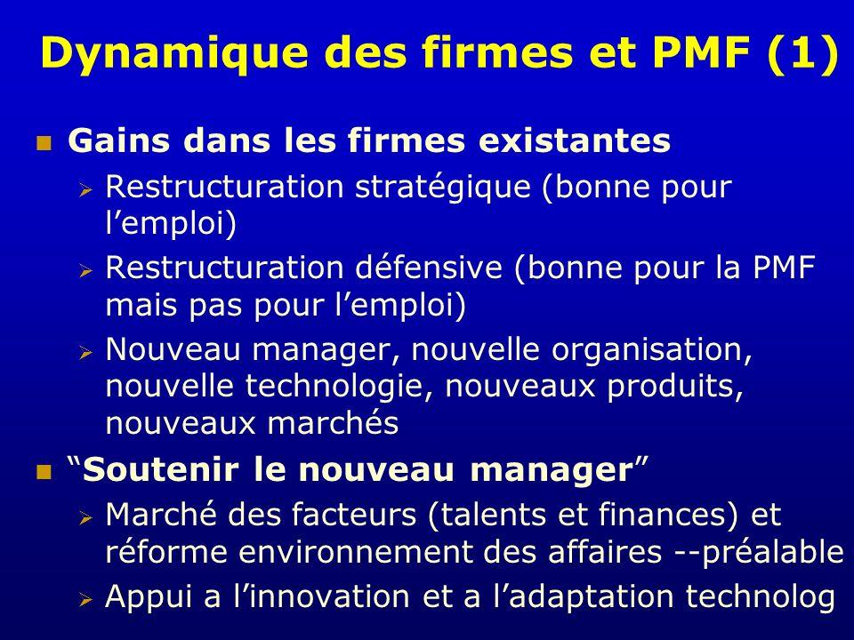 Dynamique des firmes et PMF (1)