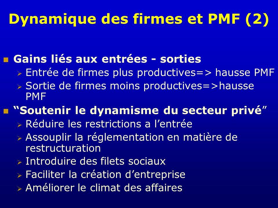 Dynamique des firmes et PMF (2)