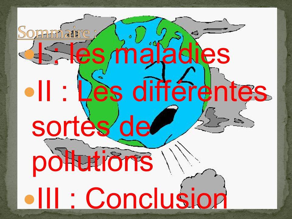 II : Les différentes sortes de pollutions III : Conclusion