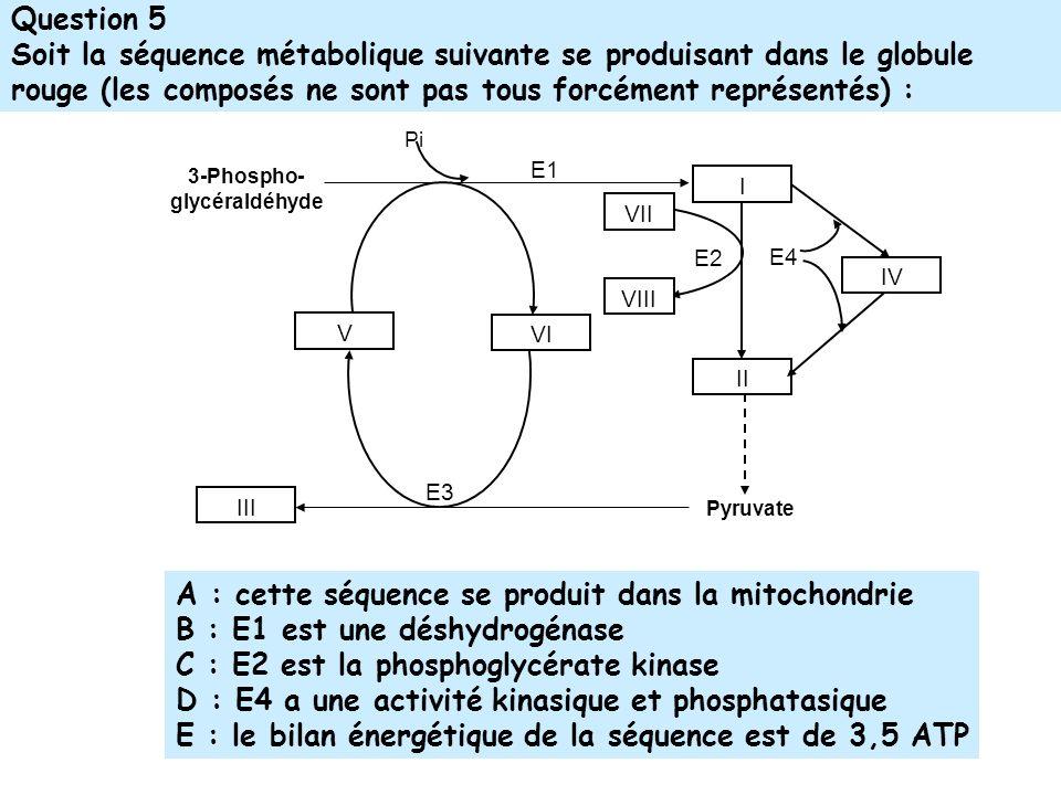 A : cette séquence se produit dans la mitochondrie