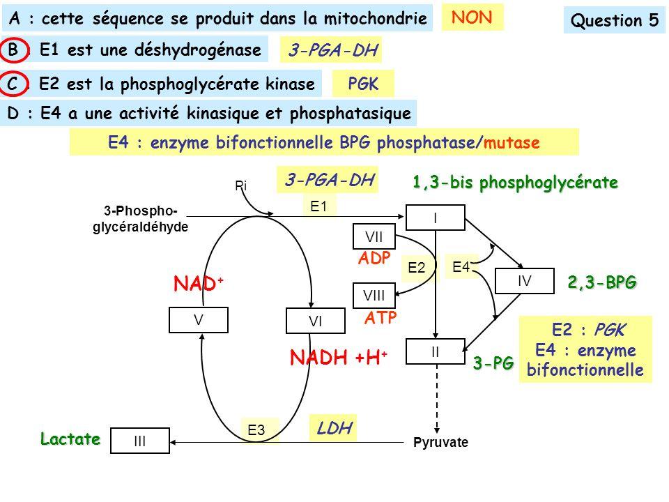 NAD+ NADH +H+ A : cette séquence se produit dans la mitochondrie NON