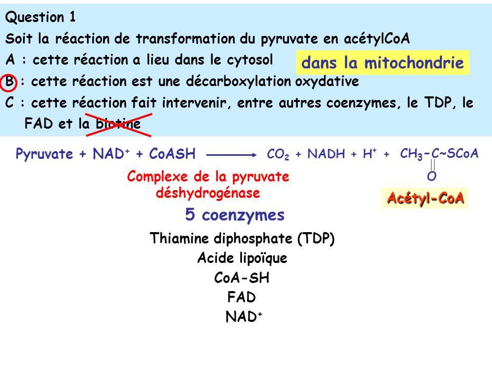 Complexe de la pyruvate Thiamine diphosphate (TDP)