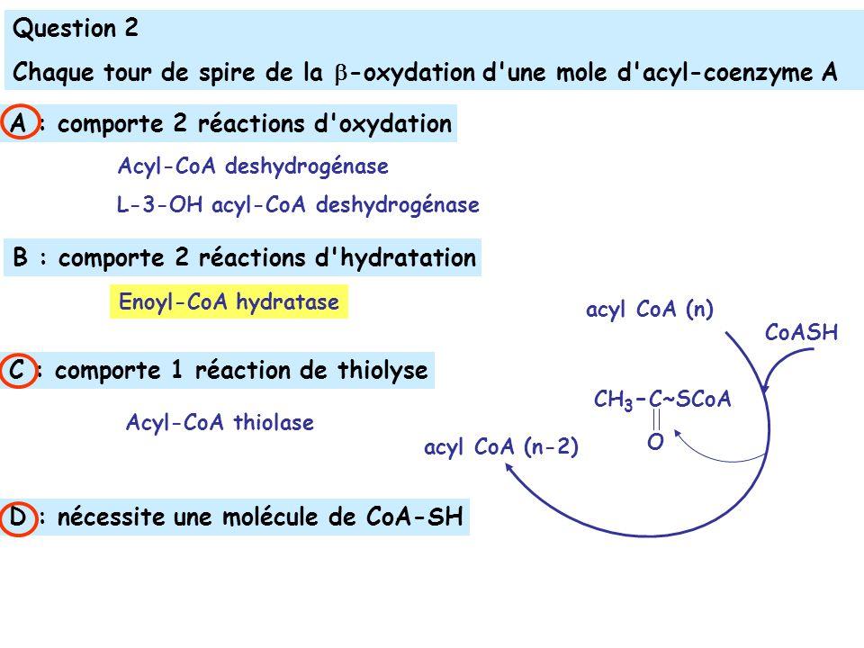 Chaque tour de spire de la -oxydation d une mole d acyl-coenzyme A