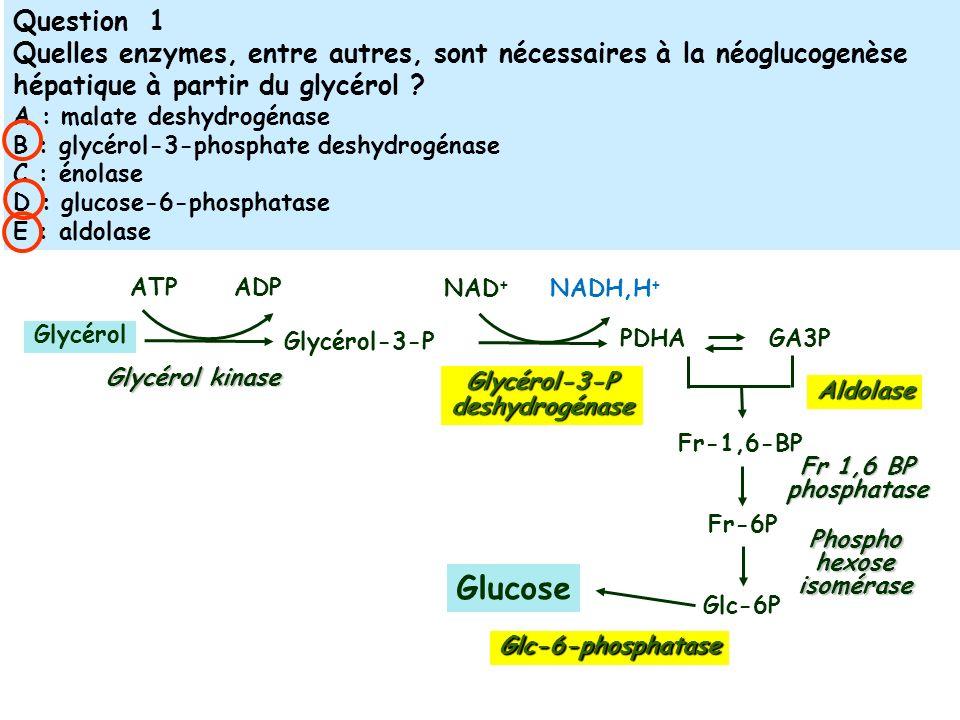 Phospho hexose isomérase