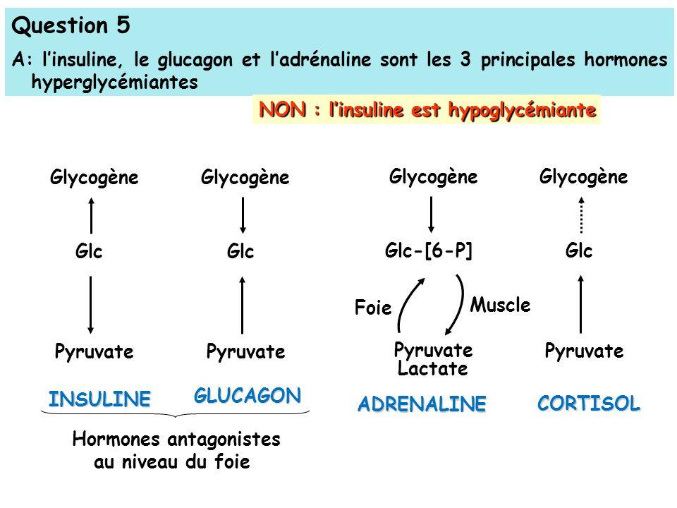 Hormones antagonistes