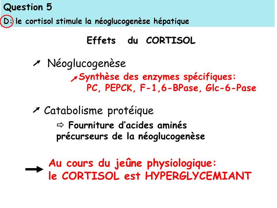 Au cours du jeûne physiologique: le CORTISOL est HYPERGLYCEMIANT