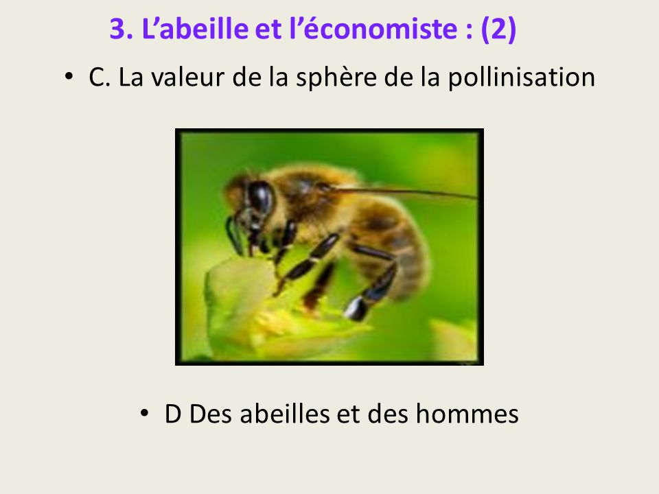 3. L'abeille et l'économiste : (2)