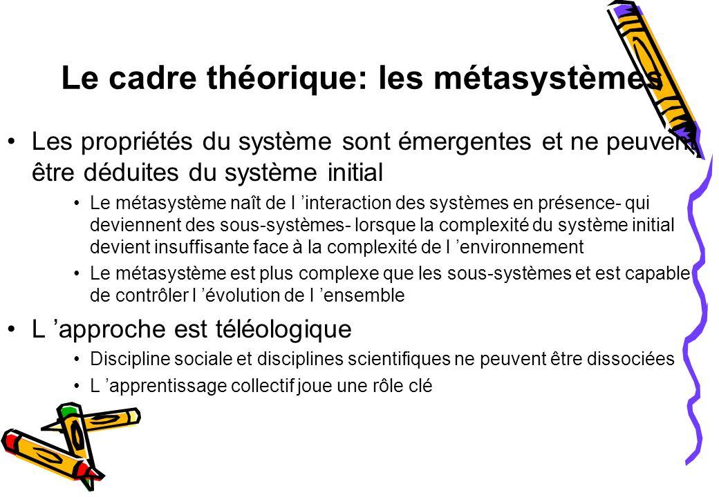 Le cadre théorique: les métasystèmes