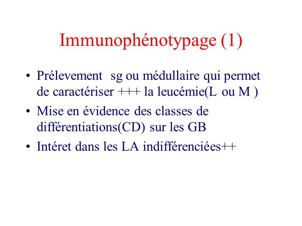 Immunophénotypage (1)
