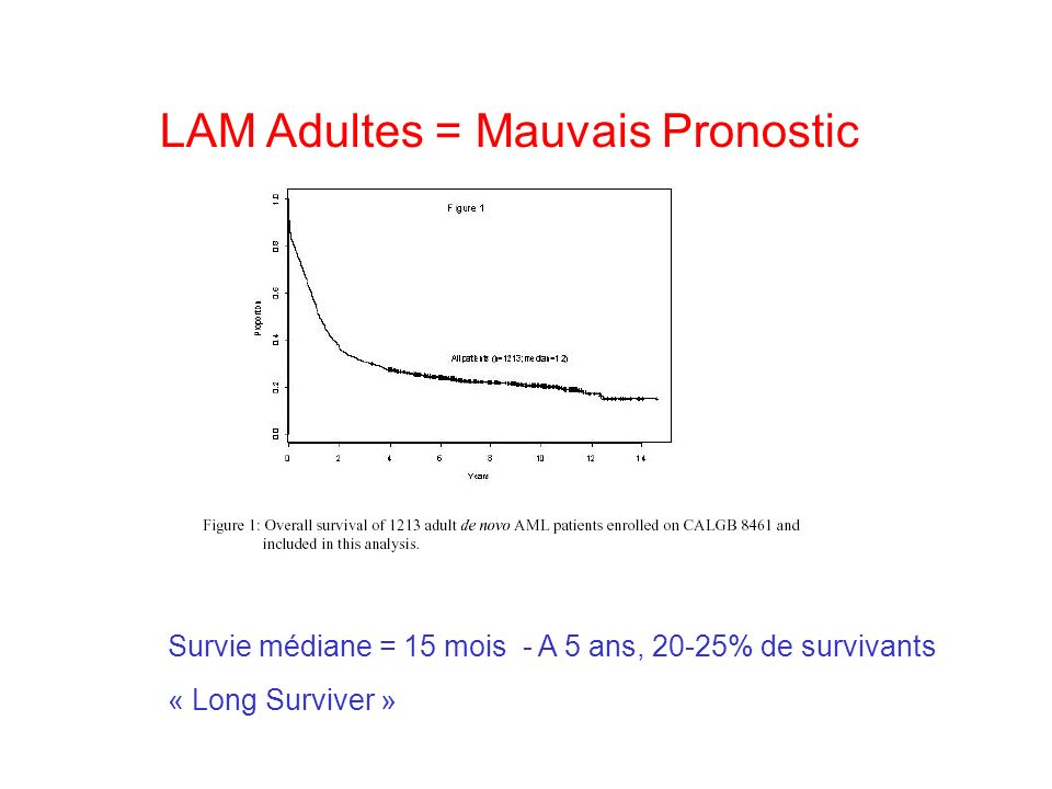 LAM Adultes = Mauvais Pronostic