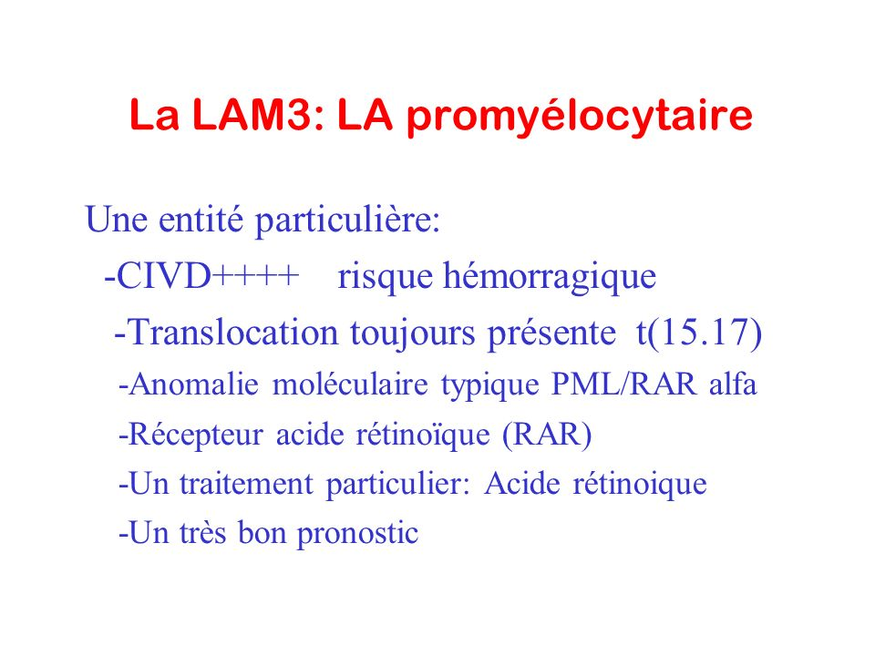 La LAM3: LA promyélocytaire