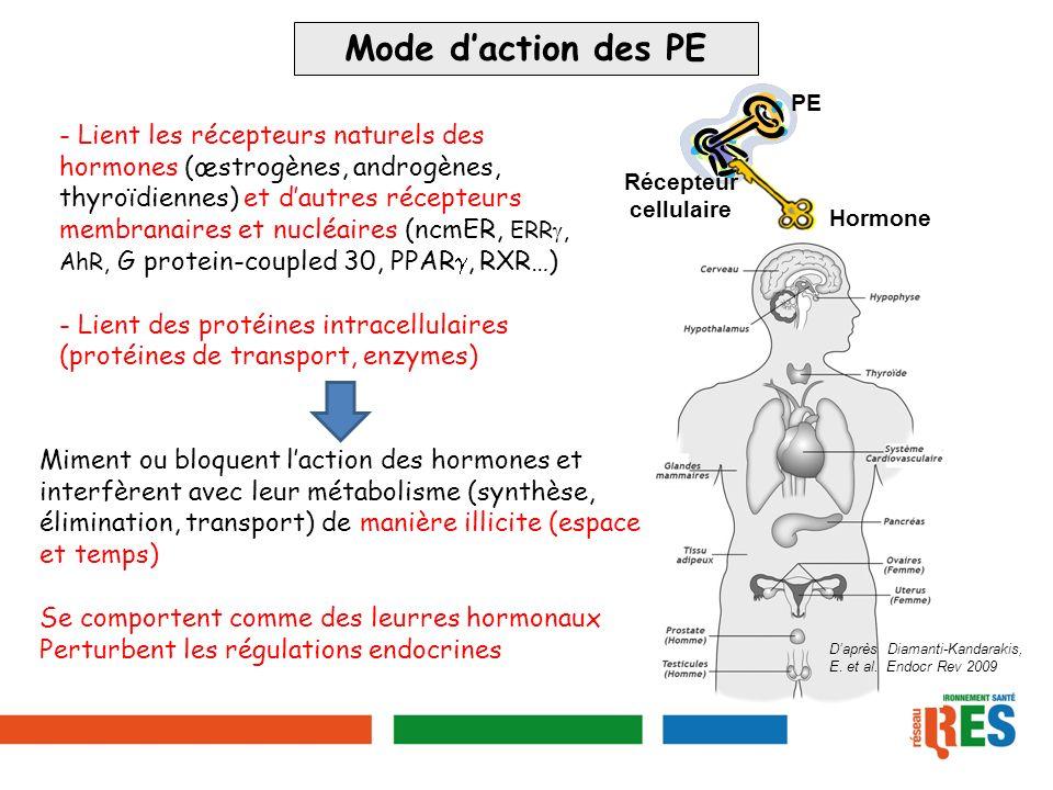 Mode d'action des PE Hormone. Récepteur. cellulaire. PE.