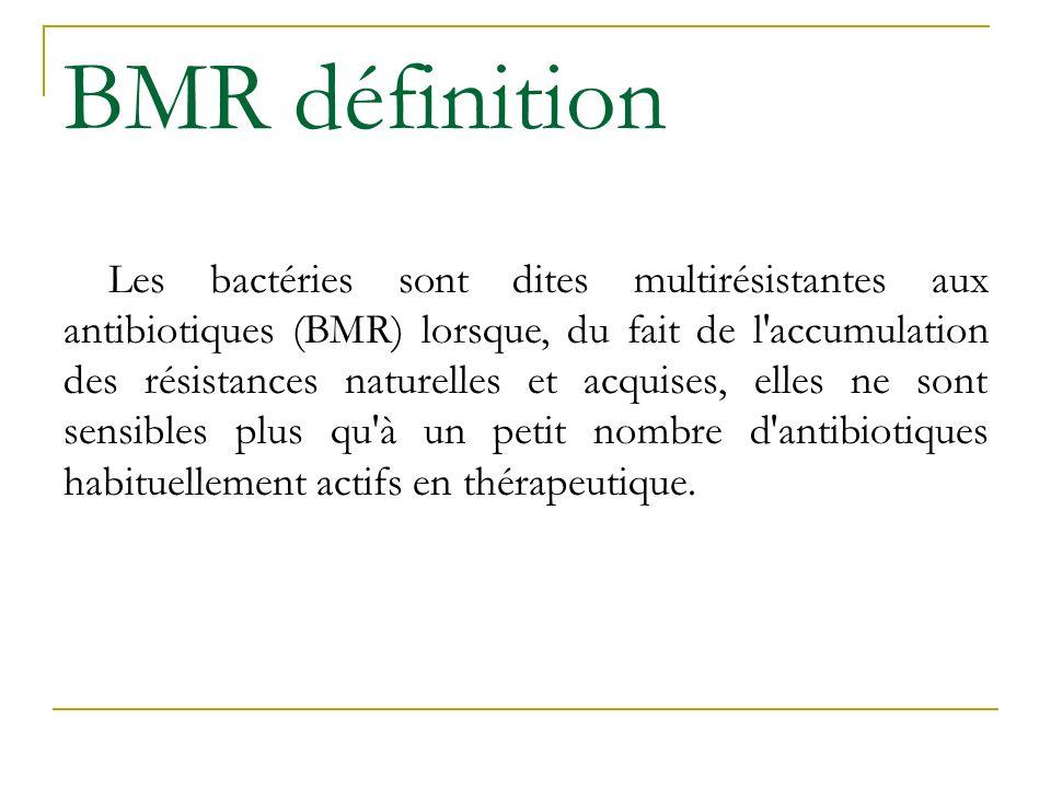 BMR définition