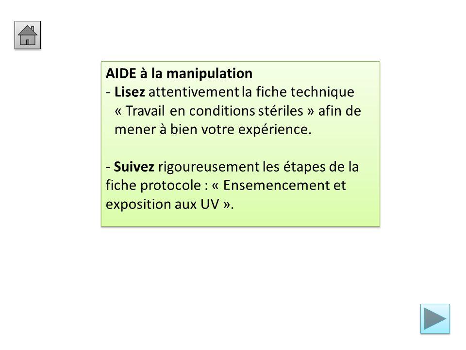 AIDE à la manipulation Lisez attentivement la fiche technique « Travail en conditions stériles » afin de mener à bien votre expérience.