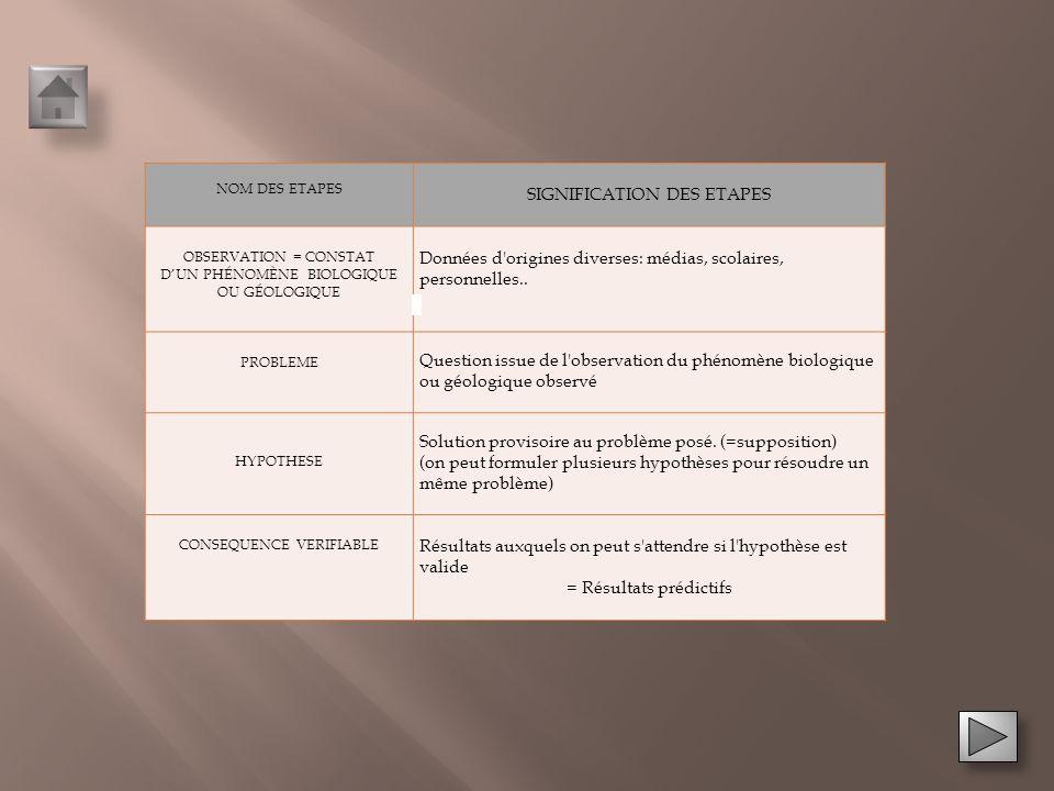 SIGNIFICATION DES ETAPES