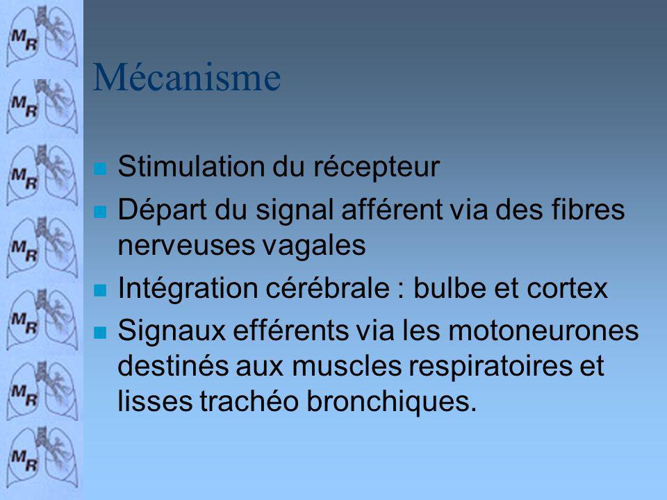 Mécanisme Stimulation du récepteur