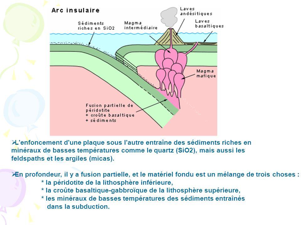L enfoncement d une plaque sous l autre entraîne des sédiments riches en