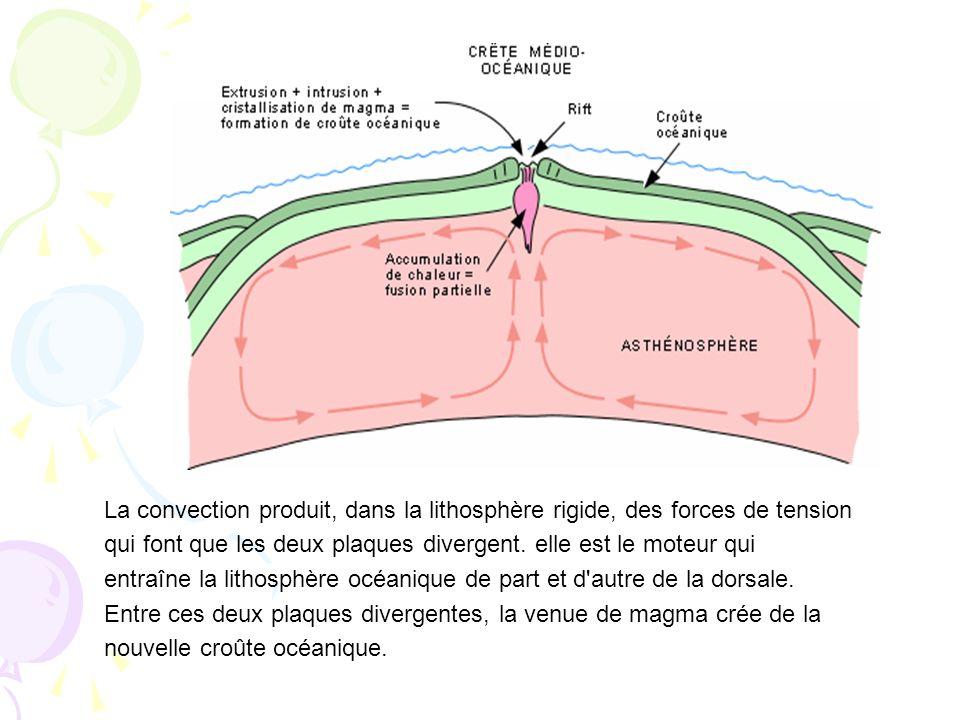 La convection produit, dans la lithosphère rigide, des forces de tension