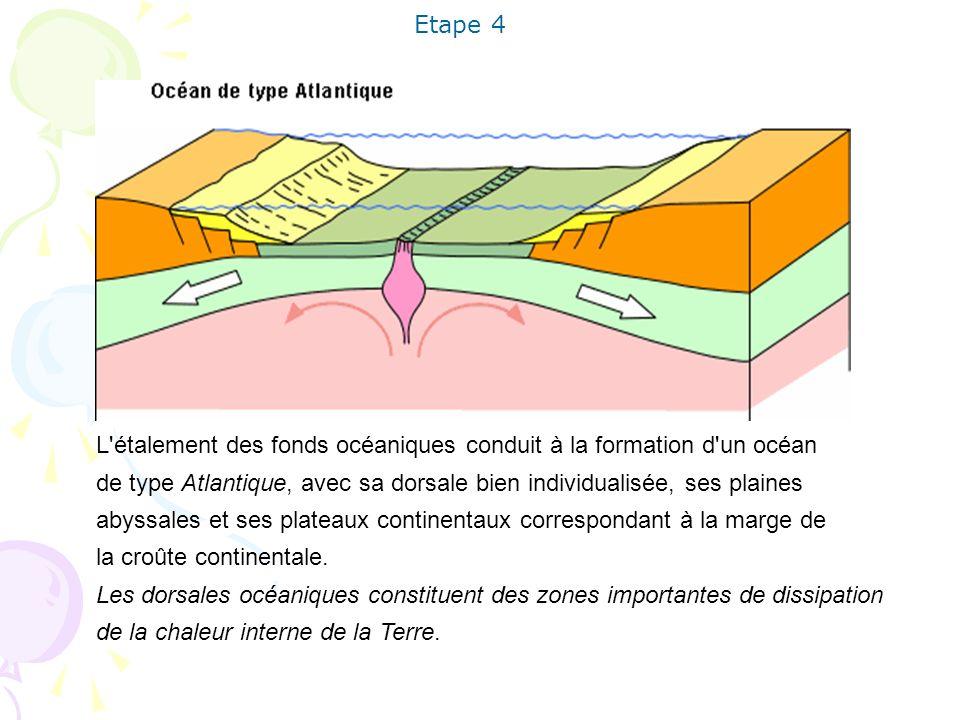 Etape 4 L étalement des fonds océaniques conduit à la formation d un océan. de type Atlantique, avec sa dorsale bien individualisée, ses plaines.