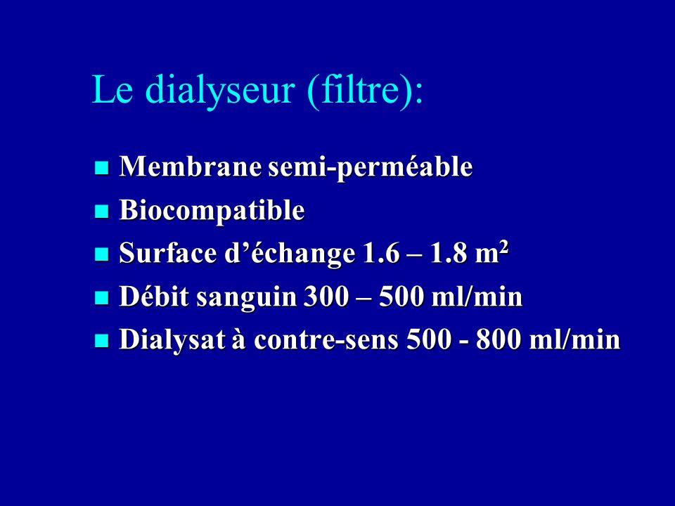 Le dialyseur (filtre):