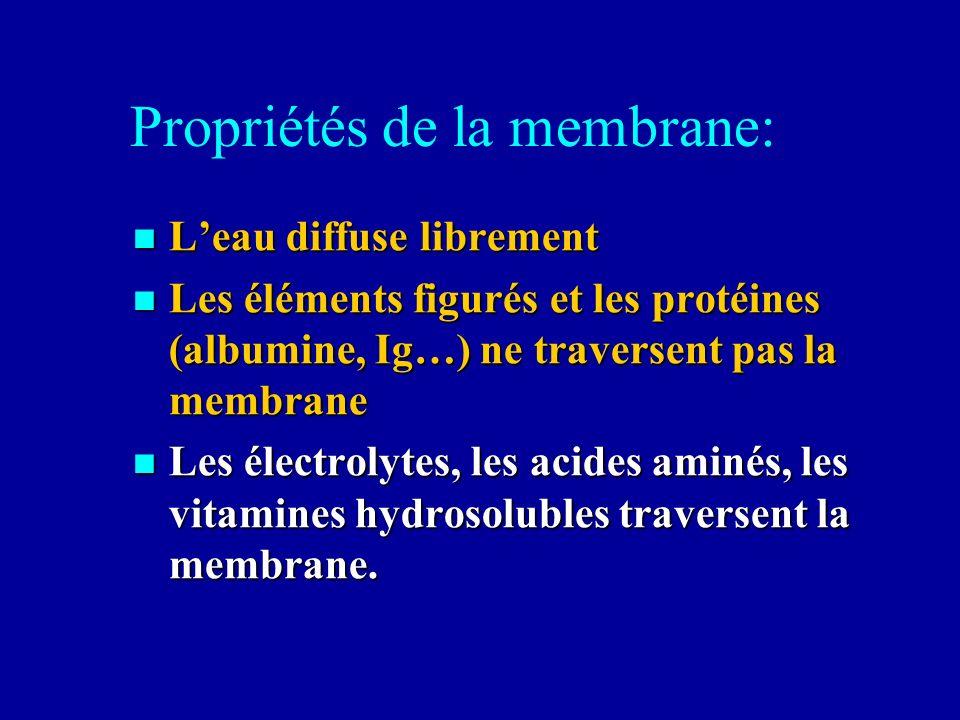 Propriétés de la membrane:
