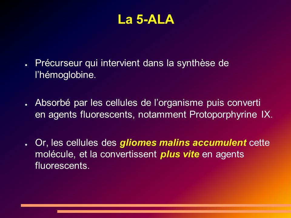 La 5-ALA Précurseur qui intervient dans la synthèse de l'hémoglobine.