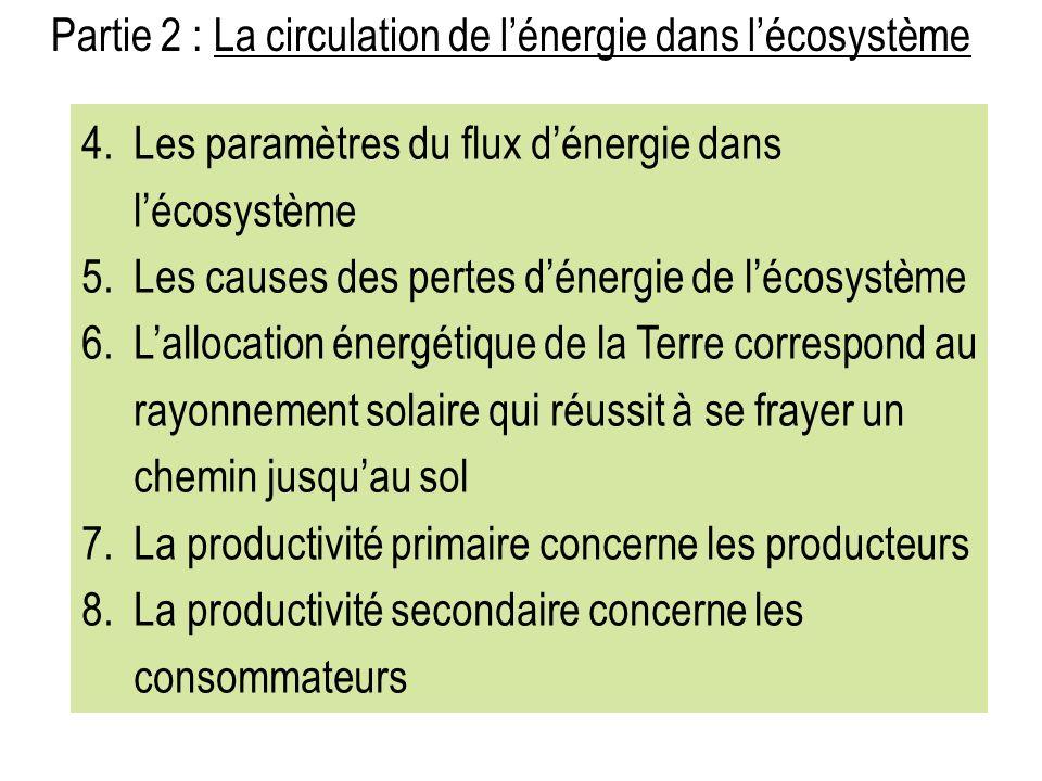 Partie 2 : La circulation de l'énergie dans l'écosystème