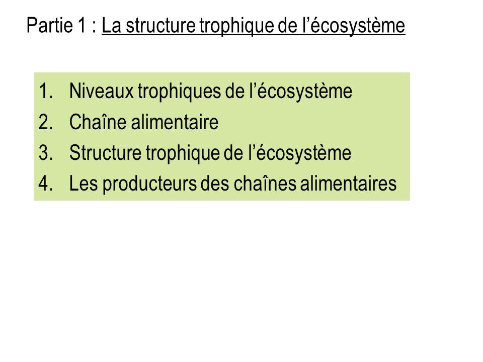 Partie 1 : La structure trophique de l'écosystème