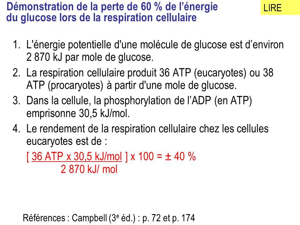 Démonstration de la perte de 60 % de l'énergie du glucose lors de la respiration cellulaire