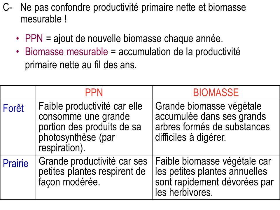 C- Ne pas confondre productivité primaire nette et biomasse mesurable !