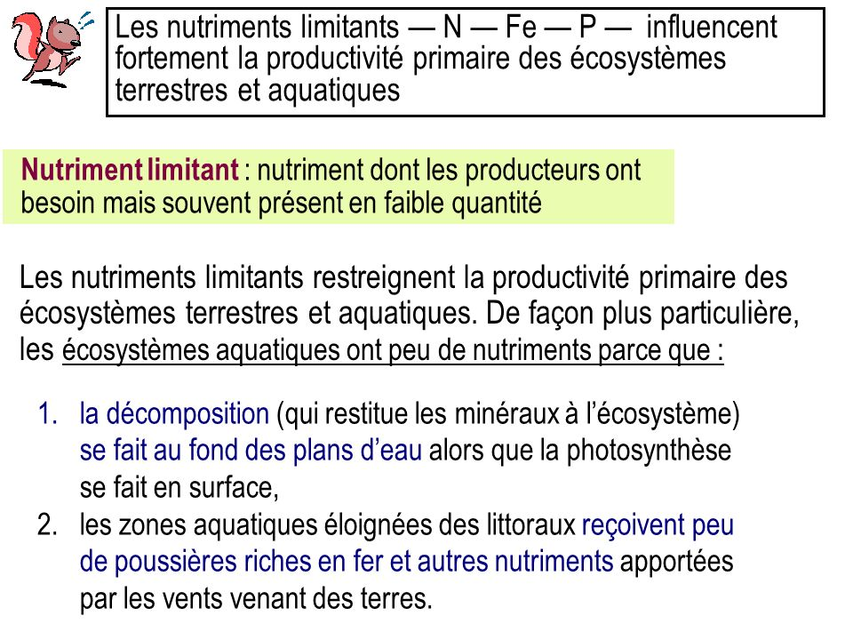 Les nutriments limitants — N — Fe — P — influencent fortement la productivité primaire des écosystèmes terrestres et aquatiques