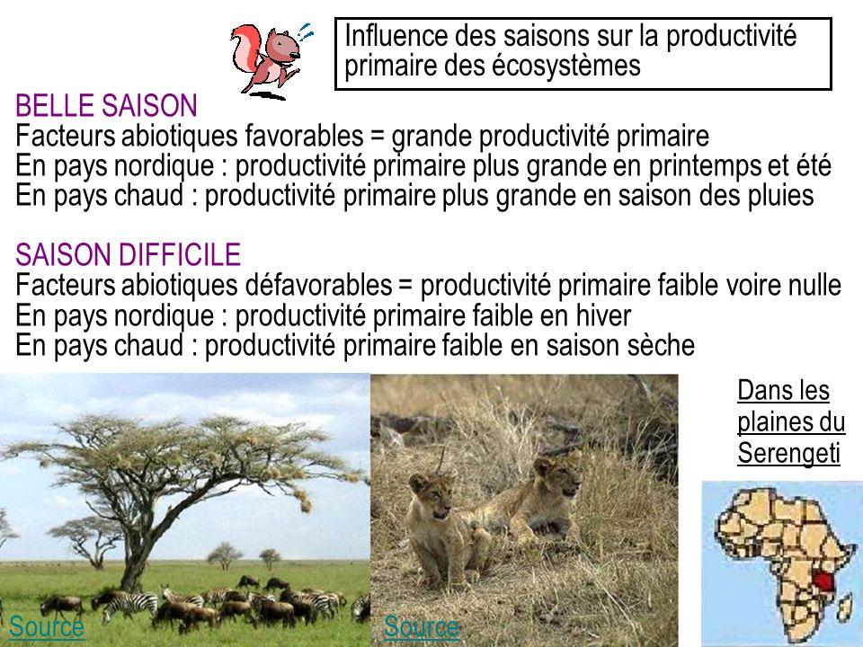 Influence des saisons sur la productivité primaire des écosystèmes