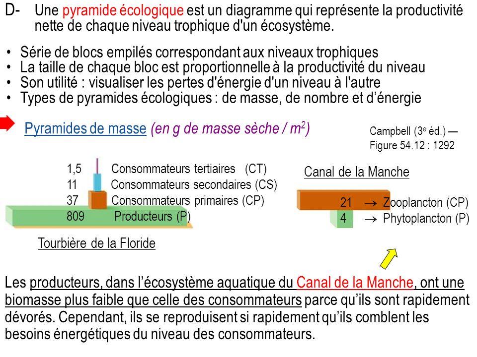 D- Une pyramide écologique est un diagramme qui représente la productivité nette de chaque niveau trophique d un écosystème.