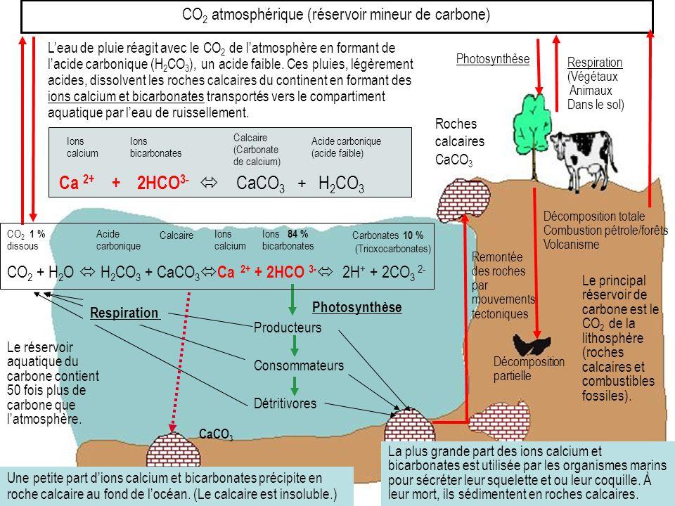 CO2 atmosphérique (réservoir mineur de carbone)