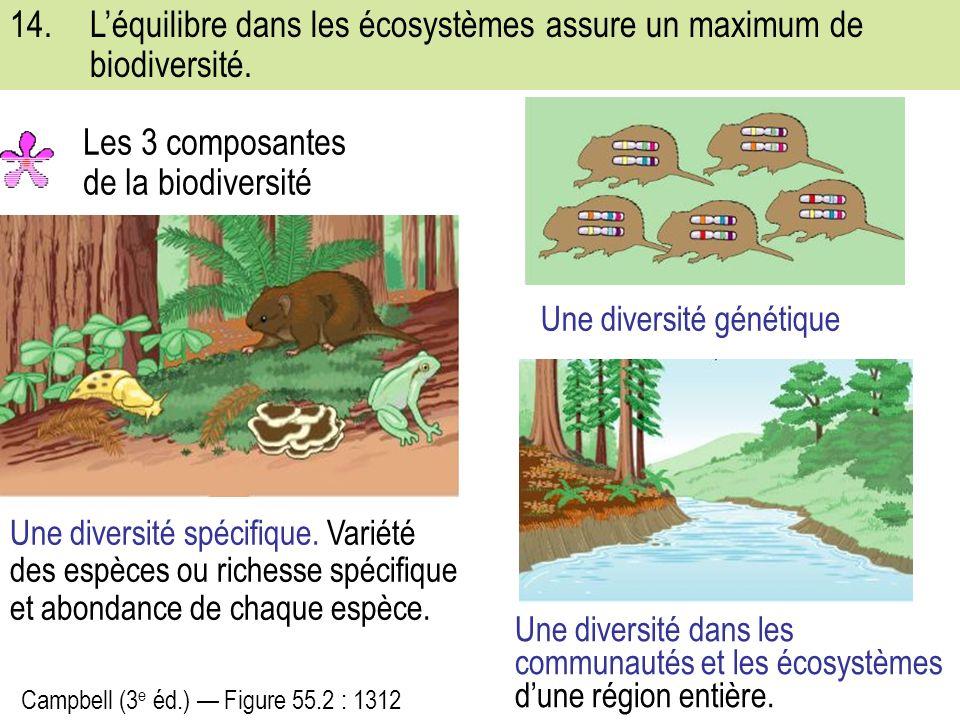 Les 3 composantes de la biodiversité
