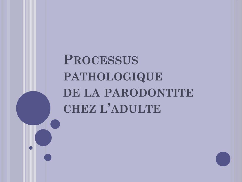 Processus pathologique de la parodontite chez l'adulte