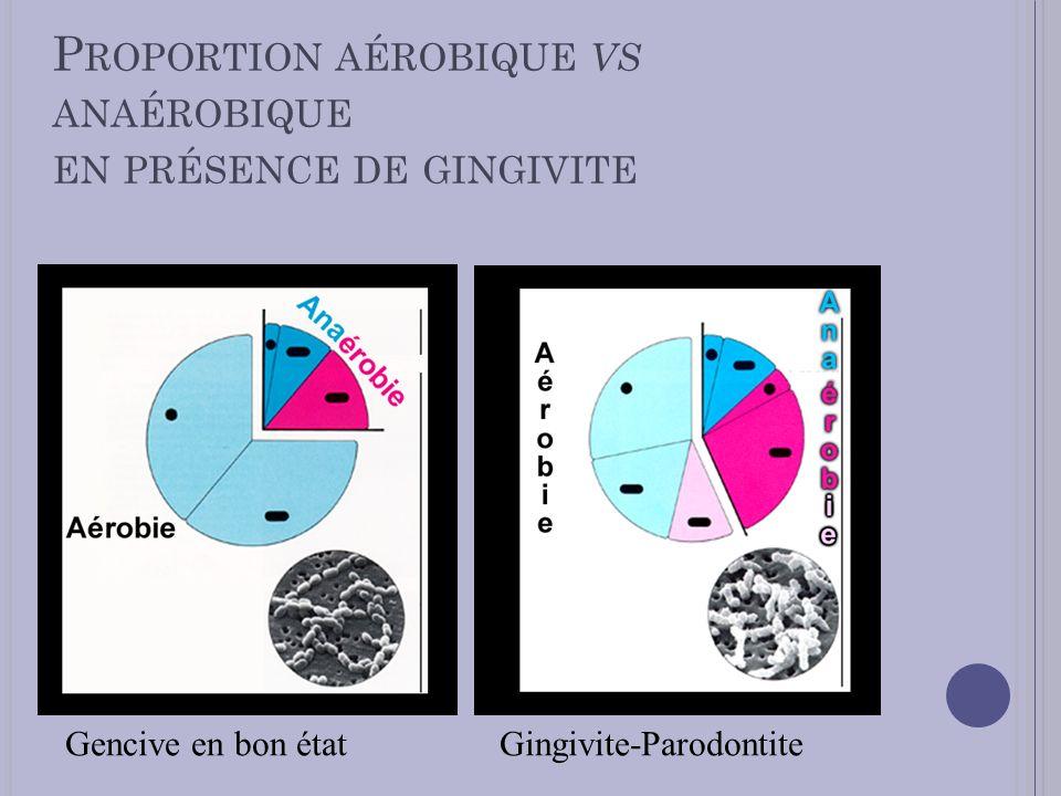 Proportion aérobique vs anaérobique en présence de gingivite