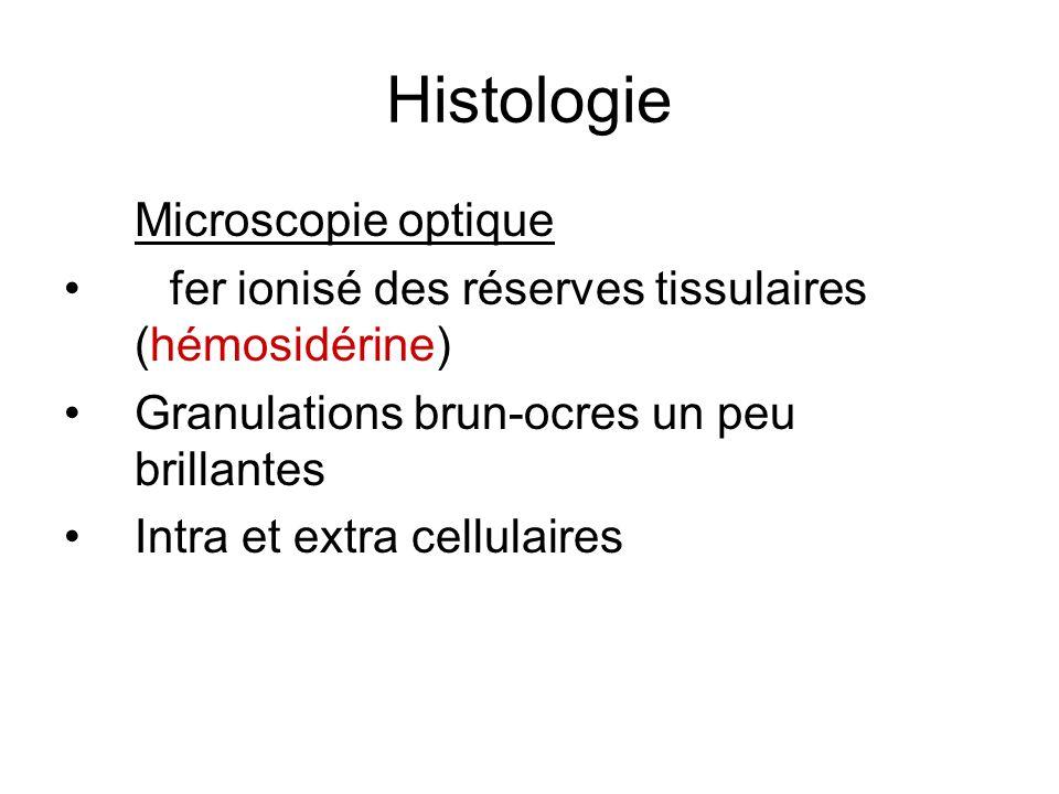 Histologie Microscopie optique
