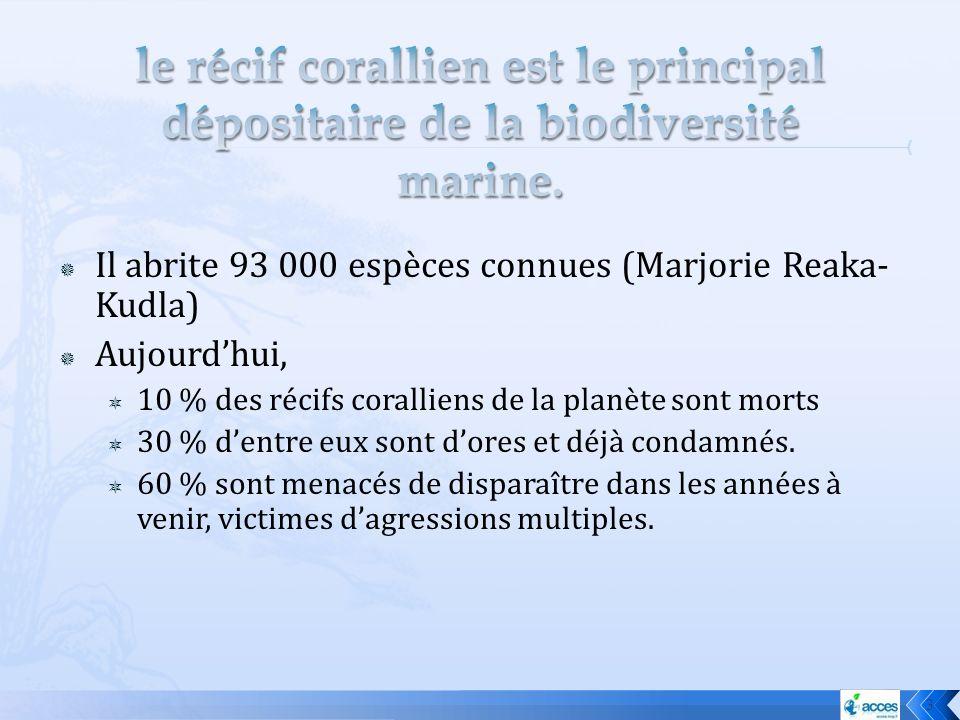 le récif corallien est le principal dépositaire de la biodiversité marine.