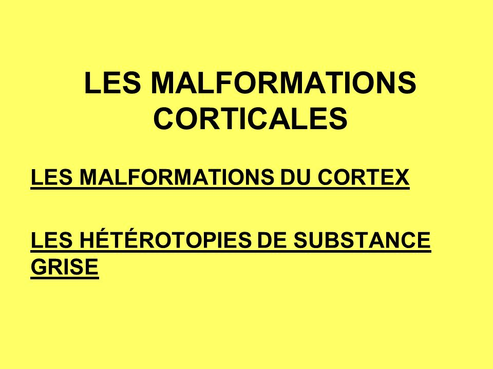 LES MALFORMATIONS CORTICALES