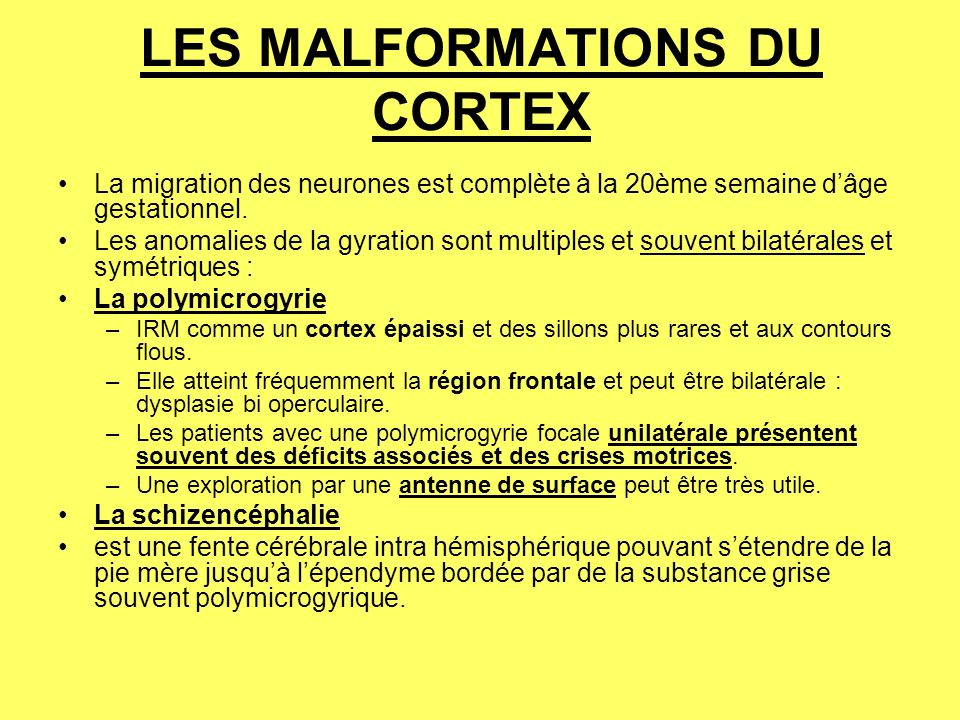 LES MALFORMATIONS DU CORTEX