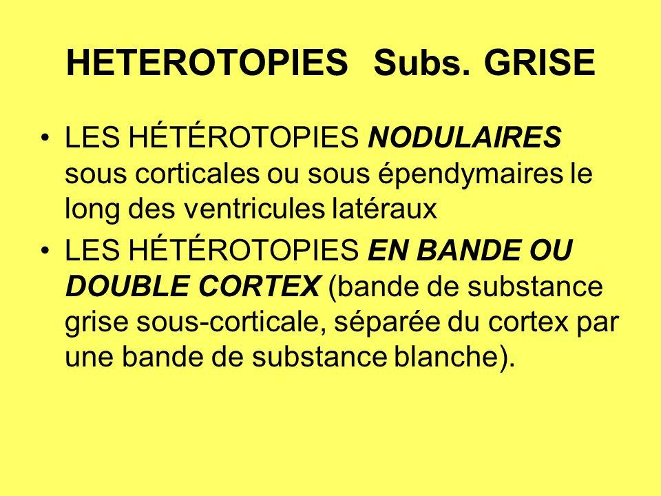 HETEROTOPIES Subs. GRISE