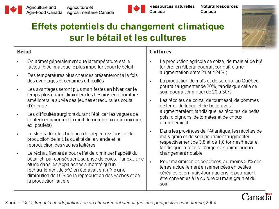 Effets potentiels du changement climatique sur le bétail et les cultures